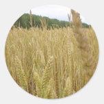 Semente do trigo adesivos em formato redondos