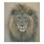 Senhor do poster do leão da selva fotografias