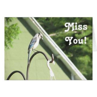 Senhorita Você Amizade Cartão da foto de Jay azul