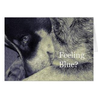 Sentimento azul cartão comemorativo