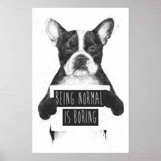 Ser normal está furando poster