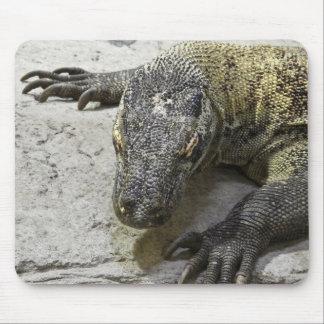 Série animal de Mousepad - dragão de Komodo