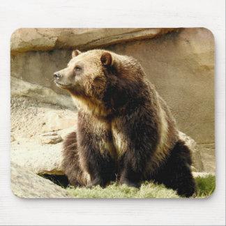 Série animal de Mousepad - urso de urso
