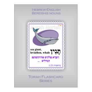 Série de Torah Flashcards - substantivos de Bereis Cartoes Postais