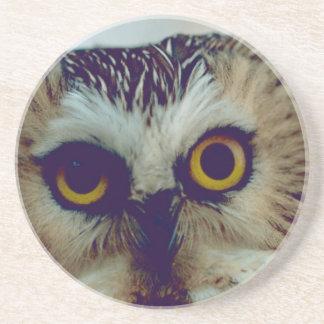 Serra-whet a coruja porta copos de arenito