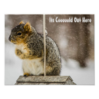 Seu de Coooold poster para fora aqui -