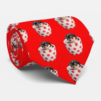 Seu modelo quadrado do teste padrão da foto gravata