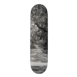 Shape De Skate 18,4cm Avenida do Grayscale dos carvalhos