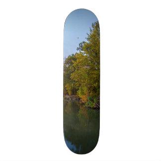 Shape De Skate 18,4cm Lago Springfield morning do outono