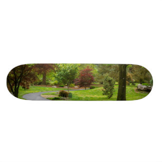 Shape De Skate 18,4cm Siga o trajeto Pano