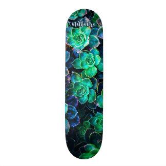 Shape De Skate 18,7cm Foto verde do Succulent da natureza