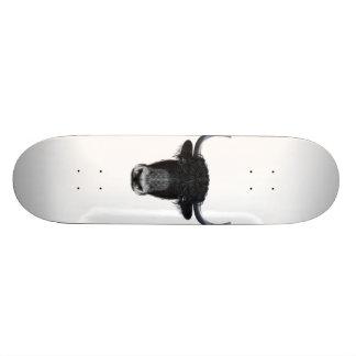 Shape De Skate 18,7cm Retrato ilustrado de iaques domésticos