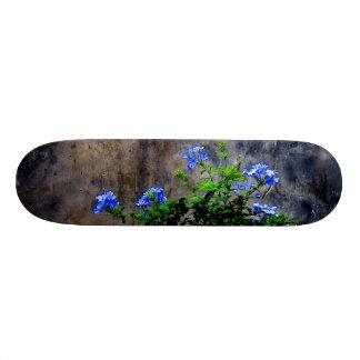 Shape De Skate 19,7cm Plumbago azul