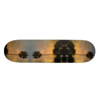 Shape De Skate 20,6cm Palma