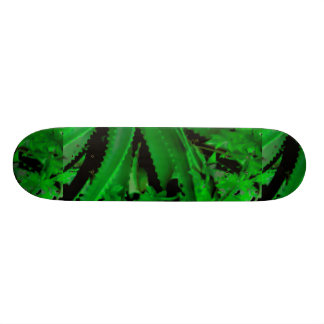 Shape De Skate 20cm Design tropical vívido