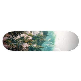 Shape De Skate 20cm Dias novos