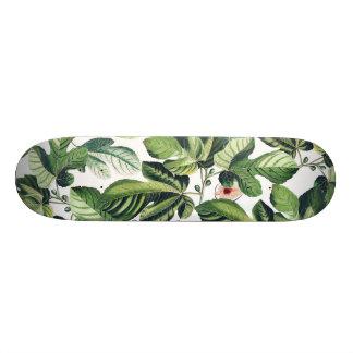 Shape De Skate 20cm Jardim do figo