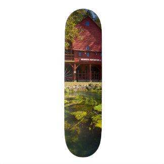 Shape De Skate 20cm Moinho de Hodgson