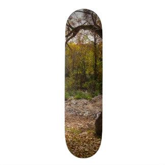 Shape De Skate 20cm Natureza que alcança para fora