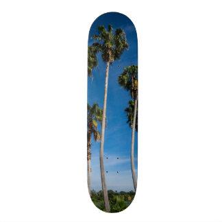Shape De Skate 20cm Palmas de encurvamento altas