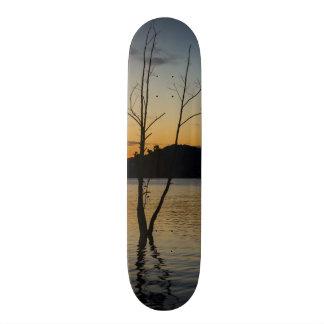 Shape De Skate 21,6cm Cercado