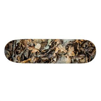 Shape De Skate 21,6cm Folhas congeladas