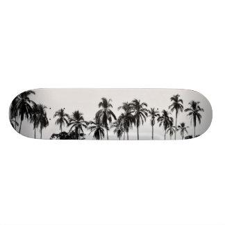 Shape De Skate 21,6cm MeddockPhoto_Skateboard_Places