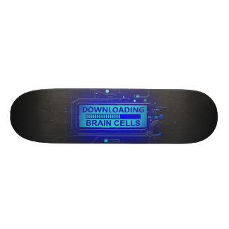 Shape De Skate 21,6cm Pilhas de cérebro da transferência