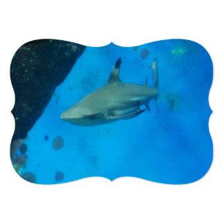 shark-59.jpg convite 12.7 x 17.78cm