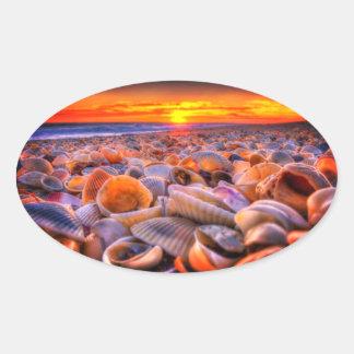 Shell encalha e etiquetas vívidas do por do sol