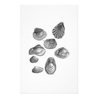 Shell esboça papelaria