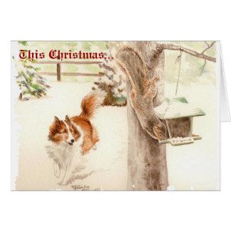 Sheltie que persegue o cartão de Natal do esquilo