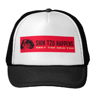 shih_tzu_happens boné