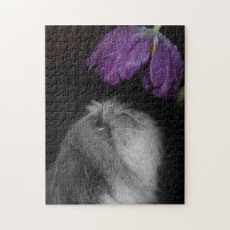Shih Tzu & quebra-cabeça da foto da flor com caixa