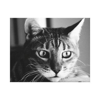 Shogun Bengal Cat Impressão Em Tela