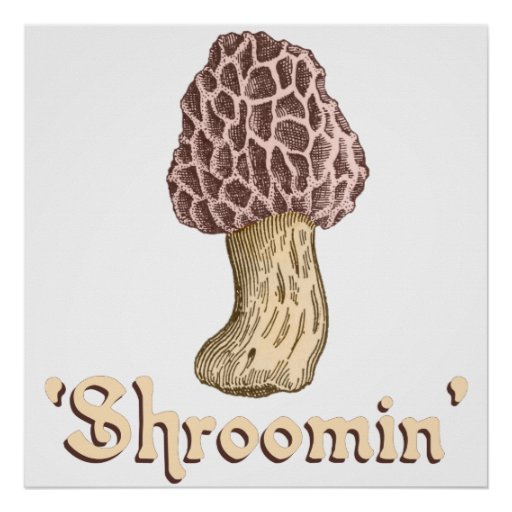 Shroomin Posteres