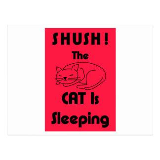 SHUSH! O gato está dormindo Cartão Postal
