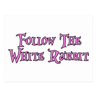 Siga o coelho branco cartão postal