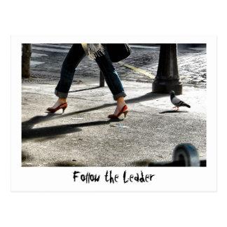 Siga o líder cartão postal