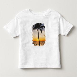 Silhueta de uma palmeira por um por do sol tshirt