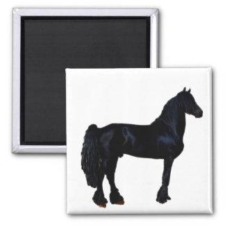 Silhueta do cavalo em preto e branco imas
