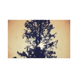 Silhueta escura da árvore em canvas