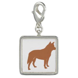 silo australiano red.png do cão do gado charms com foto