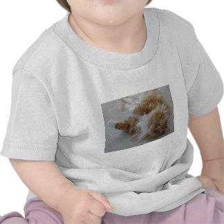 Simba o gato t-shirt