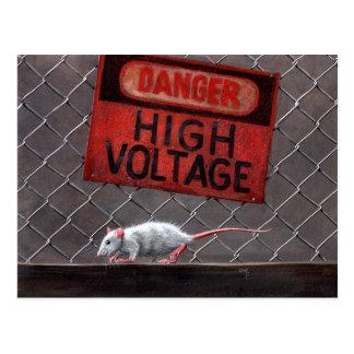 Sinal de alta tensão do rato no cartão da cerca