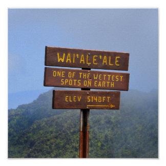 Sinal de Waialeale da montagem, Kauai, Havaí Poster
