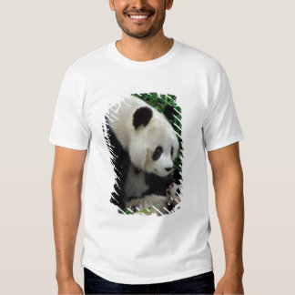 Sira de mãe à panda e ao bebê no arbusto de bambu, tshirts