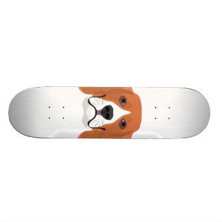 Skate A ilustração persegue o lebreiro da cara