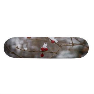 Skate Bagas nevadas