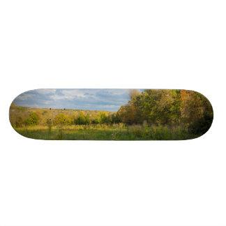 Skate Campo Overgrown do outono